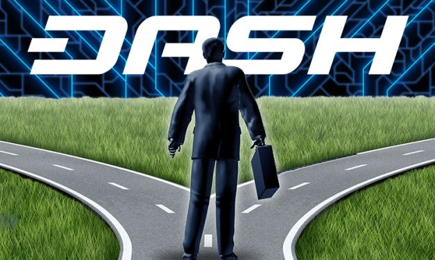 Why I Might Risk My Job With the Dash Network