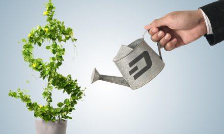 Wachstum des Dash Treasury Budgets