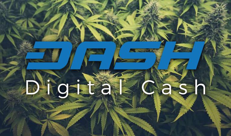 Dash gagnerait-il du terrain dans l'industrie du cannabis ? Une proposition sollicite un financement pour la recherche génomique
