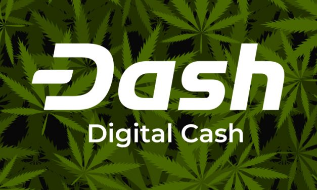 Dash Enables Cannabis Innovation to Benefit Consumers