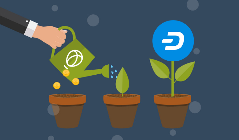 Dash Leads Cryptocurrency Growth on Uphold