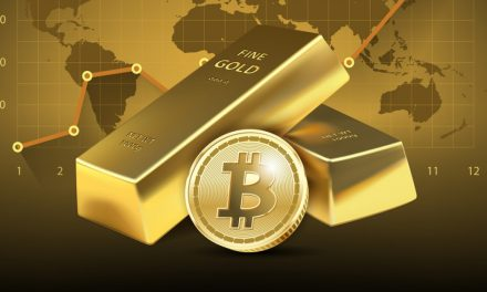Volatility, Analysts Question Bitcoin's Digital Gold Use Case